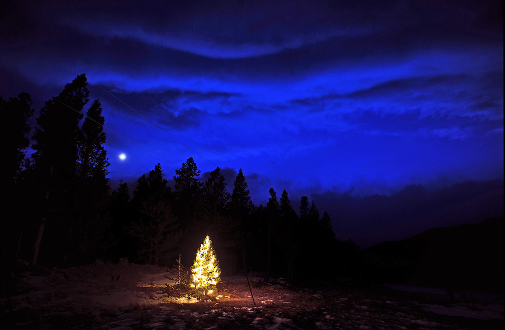 . A lone tree lit up with Christmas lights along Highway 72 north of Jamestown, Colorado and 15 miles north of Nederland. (Photo by Helen H. Richardson/The Denver Post)