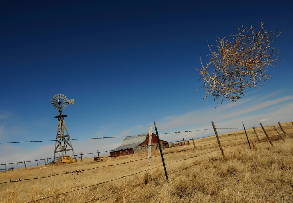 . A tumbleweed frees itself from the fence and blows through the air at a ranch north of Cheyenne, Wyoming on March 6, 2008. (Photo by RJ Sangosti/The Denver Post)