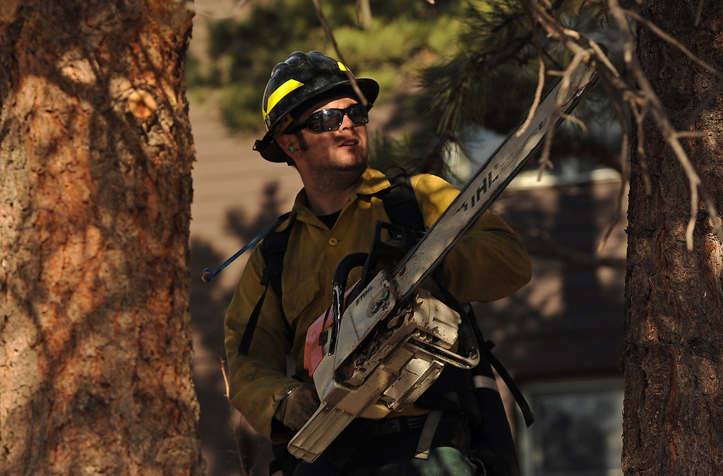 . Wildland firefighters Chris Wetzel,,  from Lafayette Fire,  cuts lower limbs from trees near  the Moraine Park Vistor\'s Center to keep fire from climbing into trees and potentially alighting the center on December 2nd, 2012. The Fern Lake Fire, which has been burning in Rocky Mountain National Park since October, kicked up yesterday and forced the evacuation of hundreds of homes east of the fire. Helen H. Richardson, The Denver Post