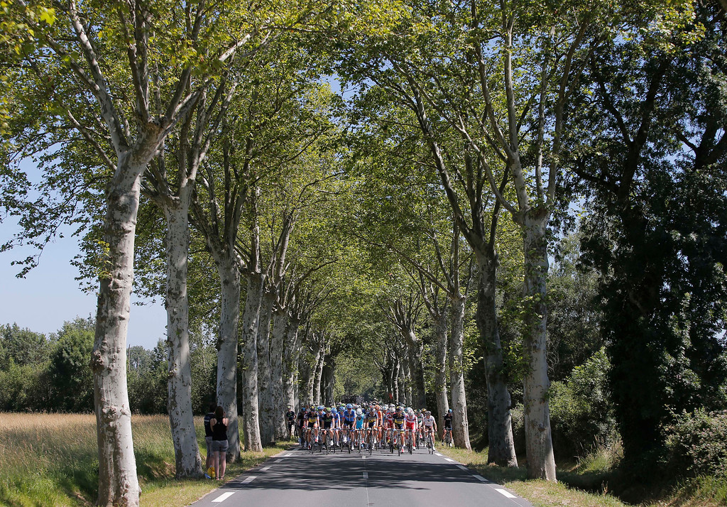. The pack rides on a tree-lined road during stage eight of the Tour de France cycling race over 195 kilometers (122 miles) with start in Castres and finish in Ax 3 Domaines, Pyrenees region, France, Saturday July 6 2013. (AP Photo/Laurent Cipriani)