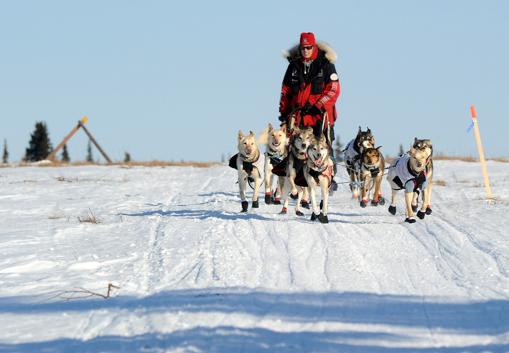 . Aliy Zirkle drives her dog team across the portage from Kaltag to Unalakleet. Zirkle is the first musher to reach the Bering Sea in Unalakleet during the 2014 Iditarod Trail Sled Dog Race on Saturday, March 8, 2014. (AP Photo/The Anchorage Daily News, Bob Hallinen)