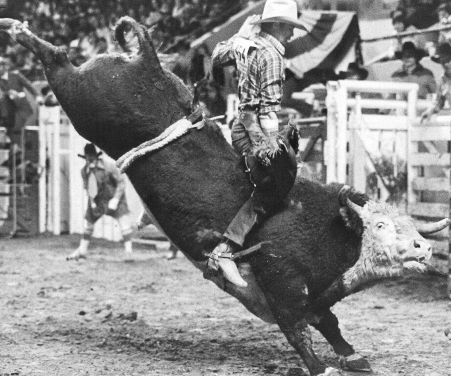 . National Western Stock Show. 1982. Denver Post Library photo archive