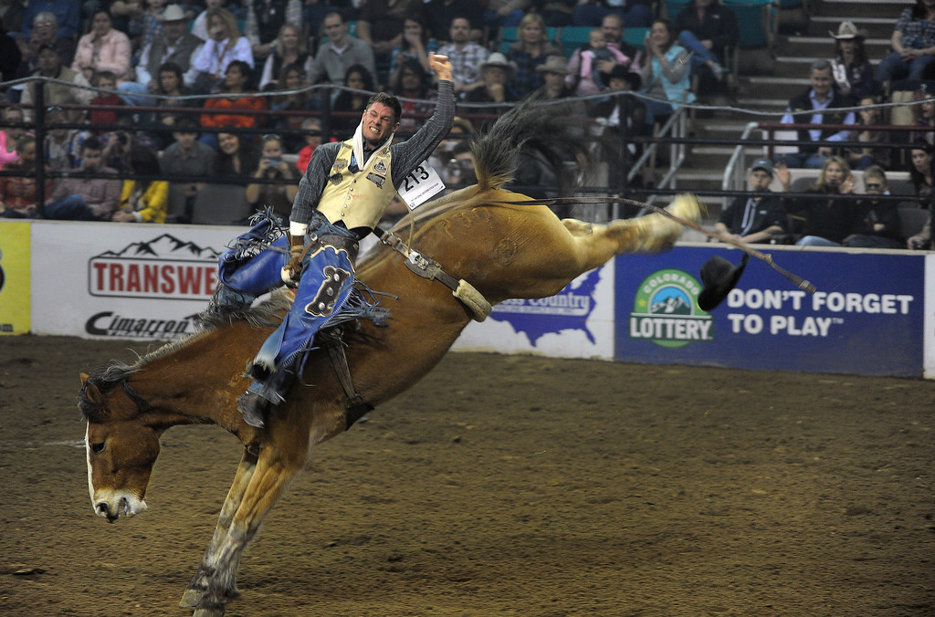 . DENVER, CO- JANUARY 27:   Chase Erickson of Helena, Montana, hangs on during the Bareback Riding competition of the rodeo. The final day of the 2013 National Western Stock show was Sunday, January 27th.  One of the big events for the day was the PRCA Pro Rodeo finals in the Coliseum.  The event featured bareback riding, steer wrestling, team roping, saddle bronc riding, tie down roping, barrel racing and bull riding.  (Photo By Helen H. Richardson/ The Denver Post)