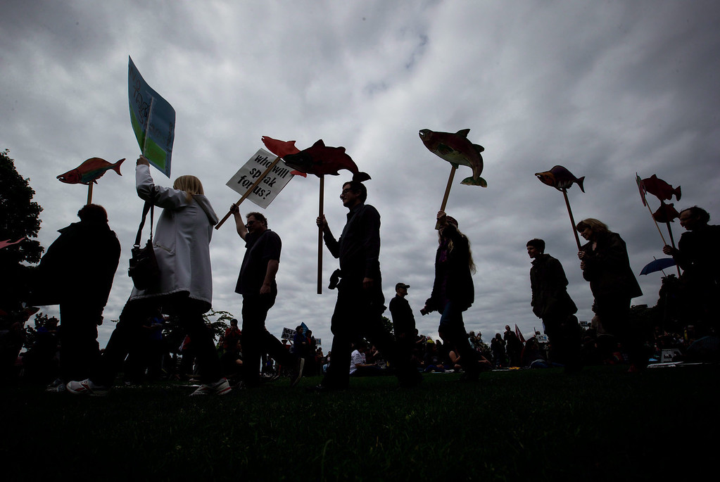 . Protesters are silhouetted while carrying cutouts of salmon during a demonstration against the Enbridge Northern Gateway Pipeline in Vancouver, on May 10, 2014. (AP Photo/The Canadian Press, Darryl Dyck)