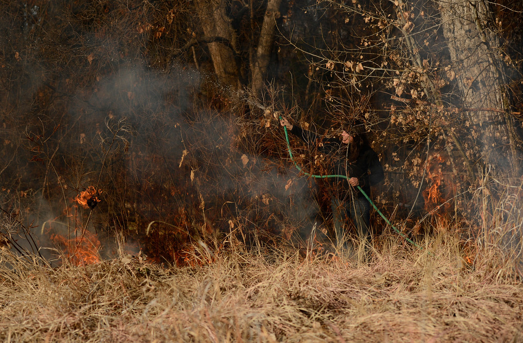 . DENVER, CO. - MARCH 07: Katy Wilcox, of the Denver Botanic Gardens, wets down trees during a controlled burn of the Laura Smith Porter Plains Garden, March, 07, 2013. Fires are a natural part of the plains ecology and help balance the diversity of species. The burn will aid in the germination and growth of different species in the garden. (Photo By RJ Sangosti/The Denver Post)