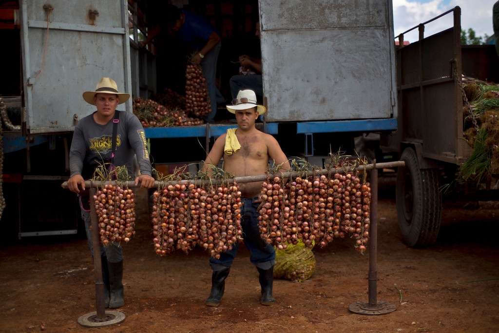 . In this Sept. 30, 2013 photo, onion farmers wait for customers at the 114th Street Market on the outskirts of Havana, Cuba. The teeming open-air bazaar on Havanaís outskirts has become a key hub for getting farm products to people in the capital. (AP Photo/Ramon Espinosa)