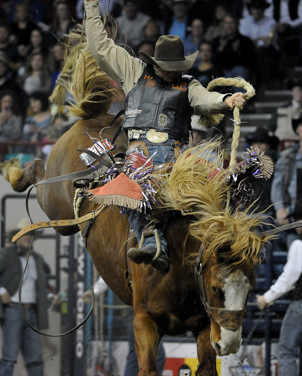 . DENVER, CO- JANUARY 27:   Cody Wright, of Milford, Utah, hangs on during the Saddle Bronc Riding competition of the rodeo.    The final day of the 2013 National Western Stock show was Sunday, January 27th.  One of the big events for the day was the PRCA Pro Rodeo finals in the Coliseum.  The event featured bareback riding, steer wrestling, team roping, saddle bronc riding, tie down roping, barrel racing and bull riding.  (Photo By Helen H. Richardson/ The Denver Post)