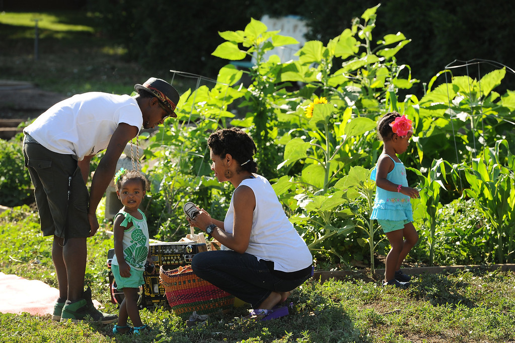 """. DENVER, CO - JULY 3:  Neambe Leadon Vita, right, and her husband Ietef Vita aka DJ Cavem Moetavation, left, bring their children Selasia, 3, in blue, at far right, and Libya, 21 months, in green, to help them tend to their gardens at 33rd and Elm street in Denver, CO. on July 3, 2013.  The couple try to grow as much food as possible as part of their vegan and healthy diet.   As part of our \""""Summer of Love\"""" series for the Style section we profile the relationship of DJ Cavem Moetavation (a.k.a. Ietef Vita) and his wife Neambe Vita.  They are proud and longtime Five Points residents. They\'re artists, community activists, musicians, teachers and more.  They espouse the idea of being vegan or vegetarian and promote eating healthfully and organically.  (Photo by Helen H. Richardson/The Denver Post)"""