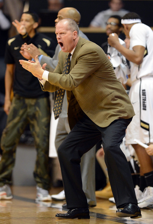 . CU coach Tad Boyle shows his intensity in the OSU game during the first half of the March 9, 2013 game in Boulder.    (Cliff Grassmick/Boulder Daily Camera)