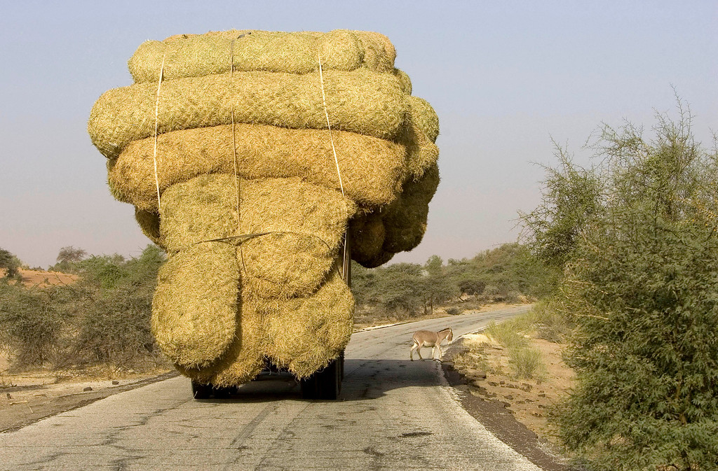 . An overloaded truck carries bales of rice stalks near Rosso, as it heads for the capital Nouakchott, January 30, 2008. Picture taken January 30, 2008. REUTERS/Normand Blouin