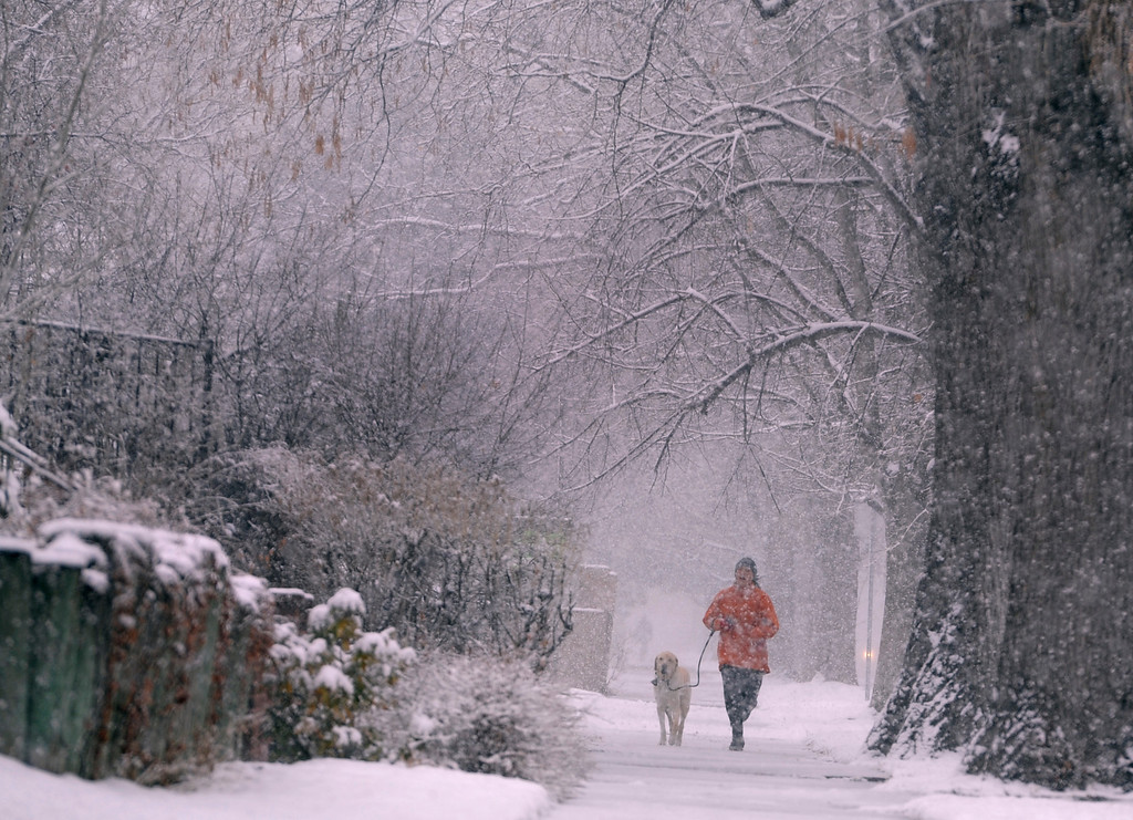 . DENVER, CO. - MARCH 9: A jogger and her dog are blanketed with snow as they run through the Park Hill neighborhood. Snow and colder weather arrive in Colorado including the metro area of Denver. (Photo By Kathryn Scott Osler/The Denver Post)