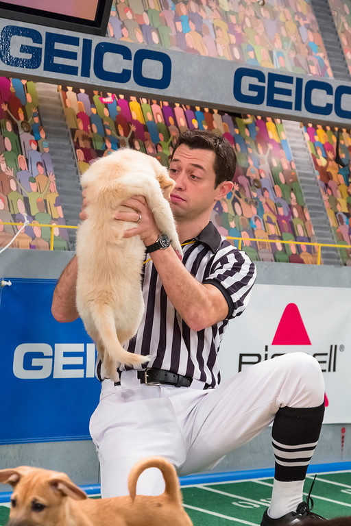 . Referee makes a call on the field during Puppy Bowl IX(Photo credit: Animal Planet)