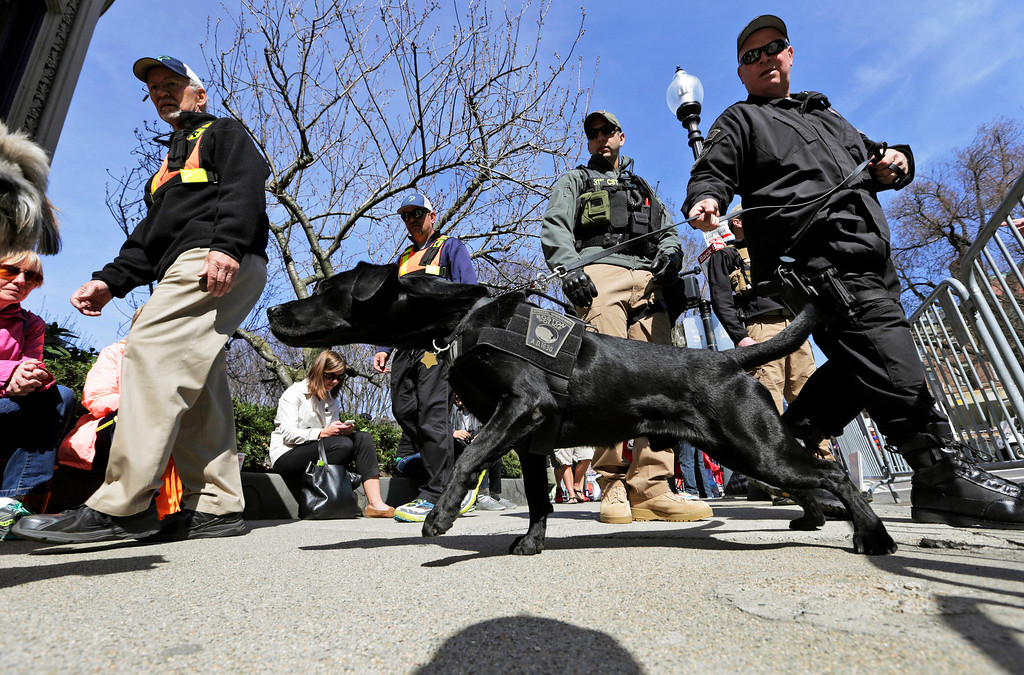 . A Boston Police K-9 officer and his dog patrol with a National Guardsman, rear right, along Commonwealth Avenue near the finish line of the 118th Boston Marathon Monday, April 21, 2014 in Boston. (AP Photo/Robert F. Bukaty)