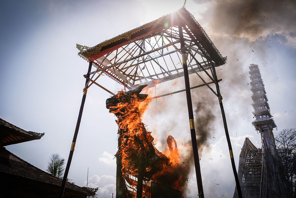 . Fire engulfs the bull-shaped sarcophagus during the Royal cremation ceremony on November 1, 2013 in Ubud, Bali, Indonesia.(Photo by Agung Parameswara/Getty Images)