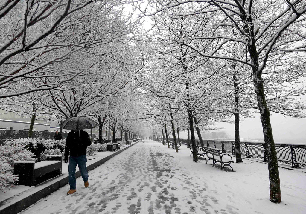 . A man walks through a park along the Hudson River in Hoboken, New Jersey, March 8, 2013.  REUTERS/Gary Hershorn