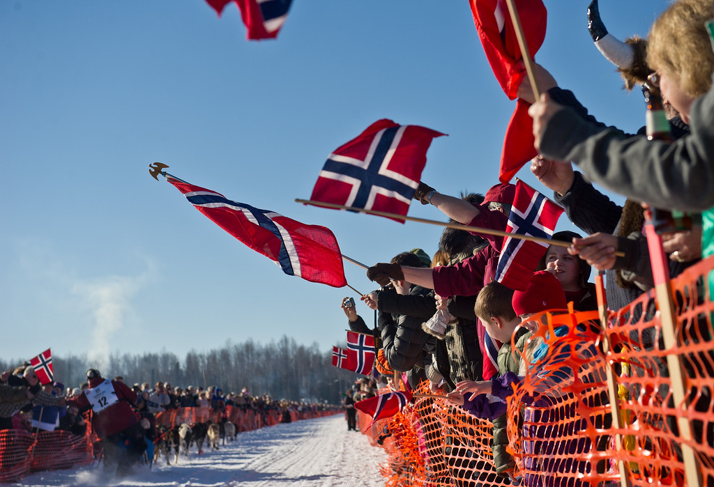 . Fans of the Norwegian contingent of mushers cheer Tommy Jordbrudal, of Norway at the start of the Iditarod Trail Sled Dog Race on Sunday, March 2, 2014, in Willow, Alaska. (AP Photo/Anchorage Daily News, Marc Lester)