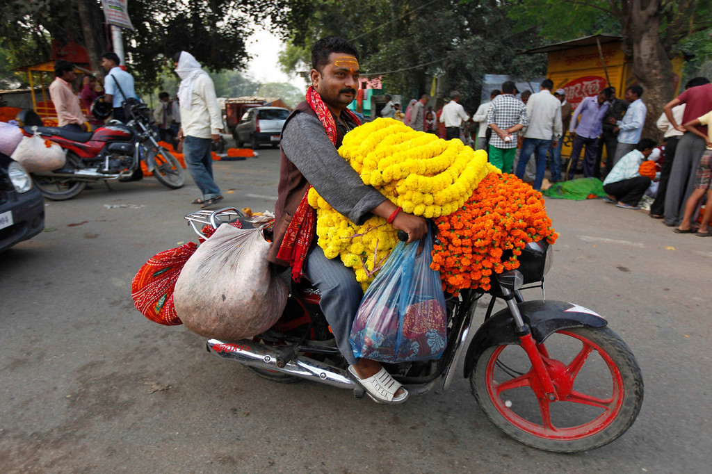 . A man transports Marigold flower garlands on a motorbike during the Diwali festival in Allahabad, India, Sunday, Nov. 3, 2013. Hindus light lamps, wear new clothes, exchange sweets and gifts and pray to goddess Lakshmi during the festival of lights, that is celebrated on Nov. 3. (AP Photo/Rajesh Kumar Singh)