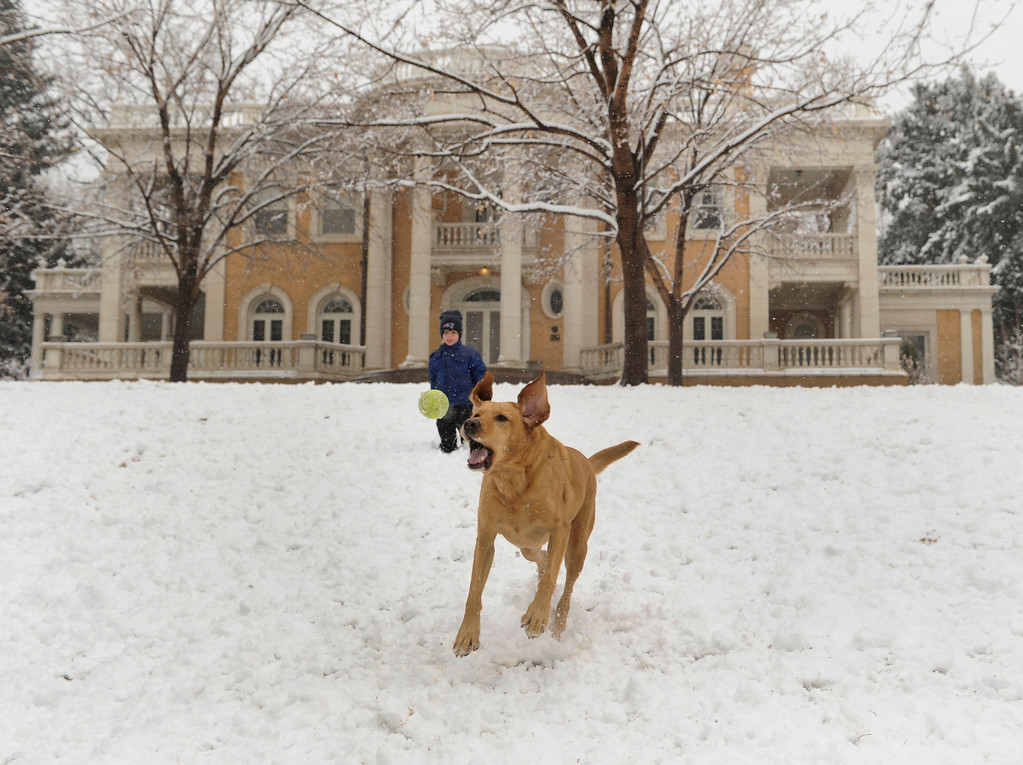 . DENVER, CO. - MARCH 9: Alex Szczebak, age 3, and his yellow lab Callie played in the snow outside the Grant-Humphreys mansion in Denver Saturday afternoon. Heavy wet snow continued to accumulate in Denver Saturday afternoon, March 9, 2013. The foot of snow that had been forecast never materialized.  (Photo By Karl Gehring/The Denver Post)