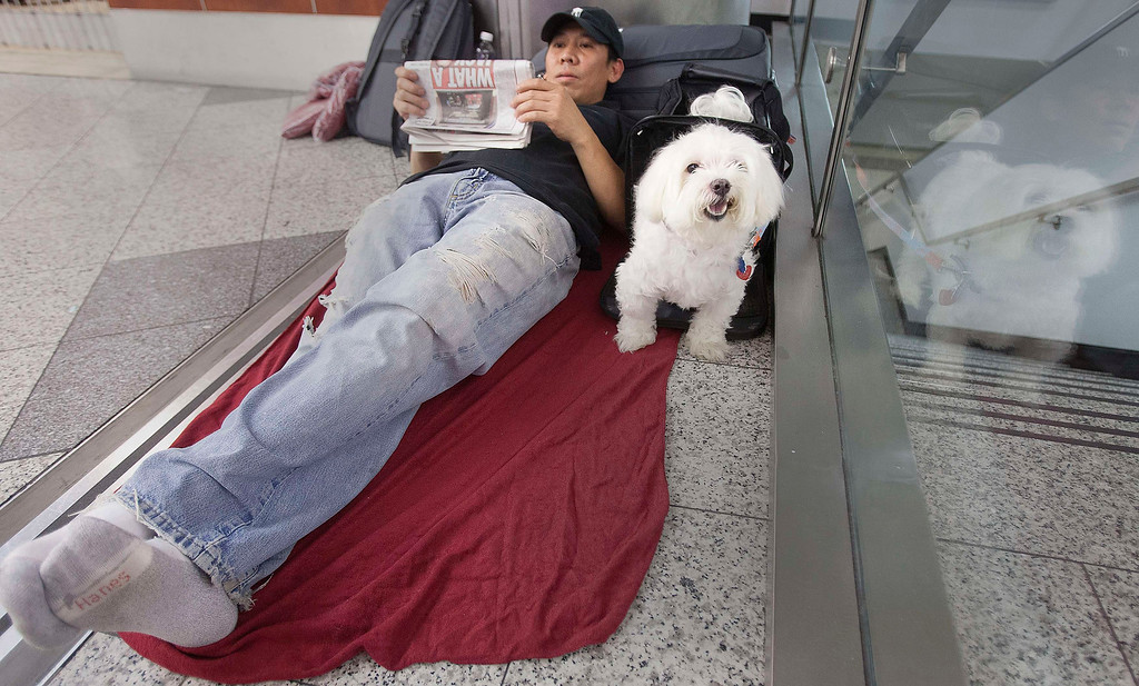 . Stranded passenger Danny Nguyen and his dog Lucky wait as they spend the night on the floor of LaGuardia airport after his flight was cancelled when a Southwest Airlines 737 made an emergency landing in New York, July 22, 2013. REUTERS/Carlo Allegri