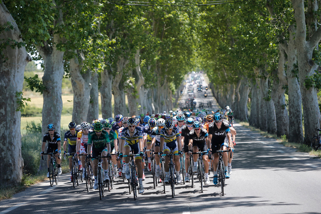 . The pack with Christopher Froome of Britain, third Sky Procycling team rider, rides on a tree-lined road during the sixth stage of the Tour de France cycling race over 176.5 kilometers (110.3 miles) with start in Aix-en-Provence and finish in Montpellier, southern France, Thursday July 4, 2013. (AP Photo/Laurent Cipriani)