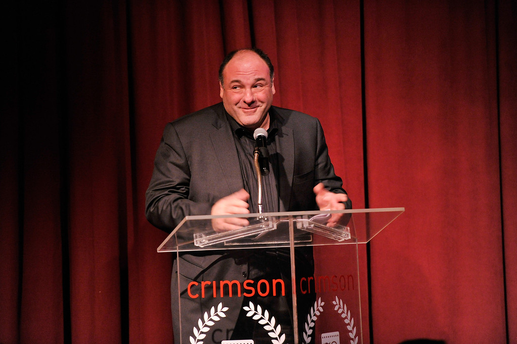 . Actor James Gandolfini speaks onstage at the 2012 New York Film Critics Circle Awards at Crimson on January 7, 2013 in New York City.  (Photo by Stephen Lovekin/Getty Images)