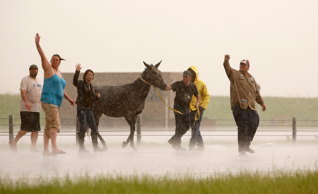 . People stop traffic to help one of several loose horses across I-40 just east of 81 in El Reno, Okla., after a tornado moved through the area on Friday, May 31, 2013. (AP Photo/The Oklahoman, Jim Beckel)