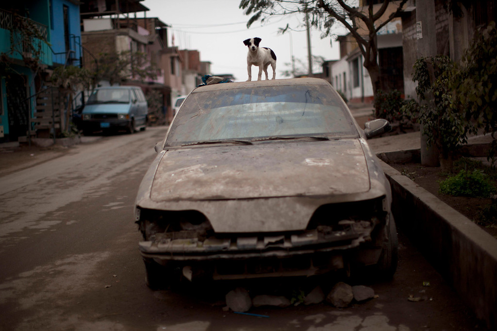 ". In this July 19, 2013 photo, a dog stands on top of an abandoned car in the Villa Lourdes neighborhood of Lima, Peru. For roughly four months a year, the sun abandons Peru\'s seaside desert capital, suffocating it under a ponderous gray cloudbank and fog that coats the city with nighttime drizzles. The cold Humboldt current that runs north from Antarctica along the coast is the culprit, colliding with the warmer tropical atmosphere to create the blinding mists called ""garua\"" in coastal Chile and Peru. (AP Photo/Rodrigo Abd)"