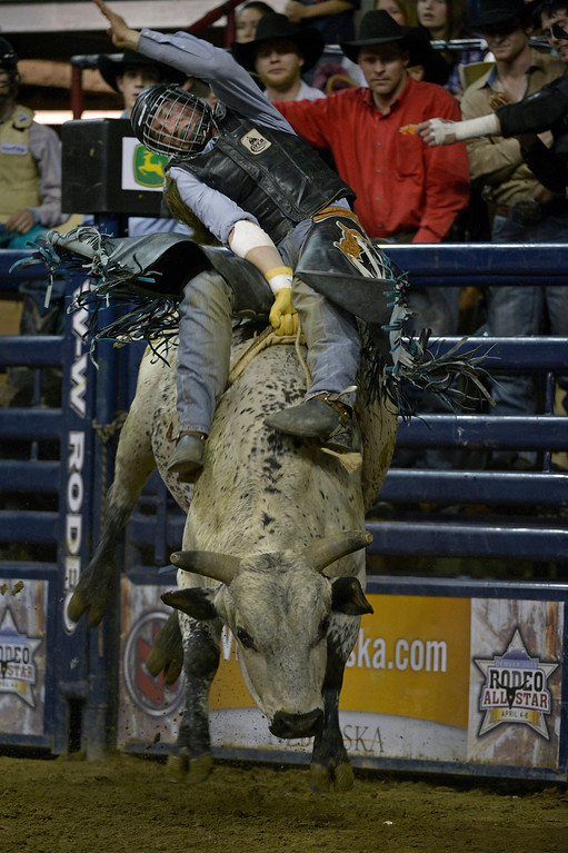 . DENVER, CO- JANUARY 27:  Abe Dillman of Grassy Butte, North Dakota hangs on during the bull riding event. The final day of the 2013 National Western Stock show was Sunday, January 27th.  One of the big events for the day was the PRCA Pro Rodeo finals in the Coliseum.  The event featured bareback riding, steer wrestling, team roping, saddle bronc riding, tie down roping, barrel racing and bull riding.  (Photo By Helen H. Richardson/ The Denver Post)