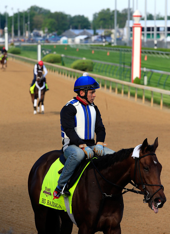 . Kentucky Derby contender Big Bazinga works out on the track during early morning workouts at Churchill Downs on May 1, 2014 in Louisville, Kentucky.  (Photo by Jamie Squire/Getty Images)