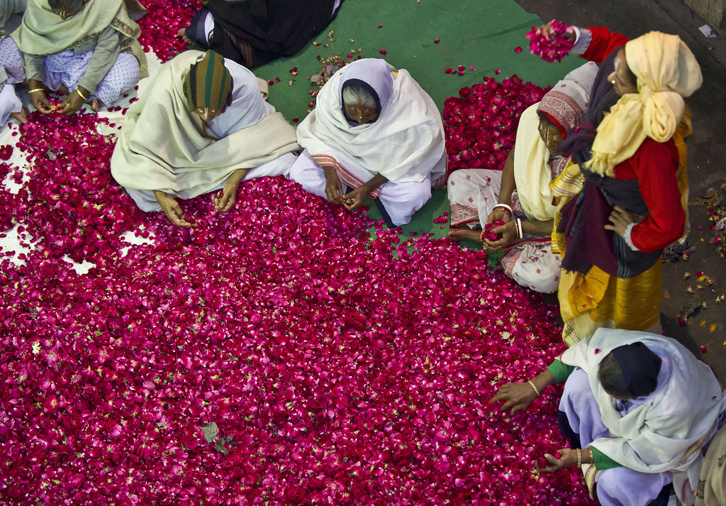 . Indian widows living in Vrindavan separate flower petals before celebrating Holi with Gulal (coloured powder), flowers and water in Vrindavan on March 14, 2014. Breaking centuries-old tradition, around 1,000 widows living in the holy city of Vrindavan celebrated the spring colour festival at Meera Sahabhagini Sadan in Vrindavan. In a symbolic gesture, the widows celebrated Holi with colors and gulal unlike the previous year where they only sprinkled flower petals over each other. As per Indian tradition, widows are considered social outcasts and refrain from celebrating Holi.  AFP PHOTO/Prakash SINGH/AFP/Getty Images