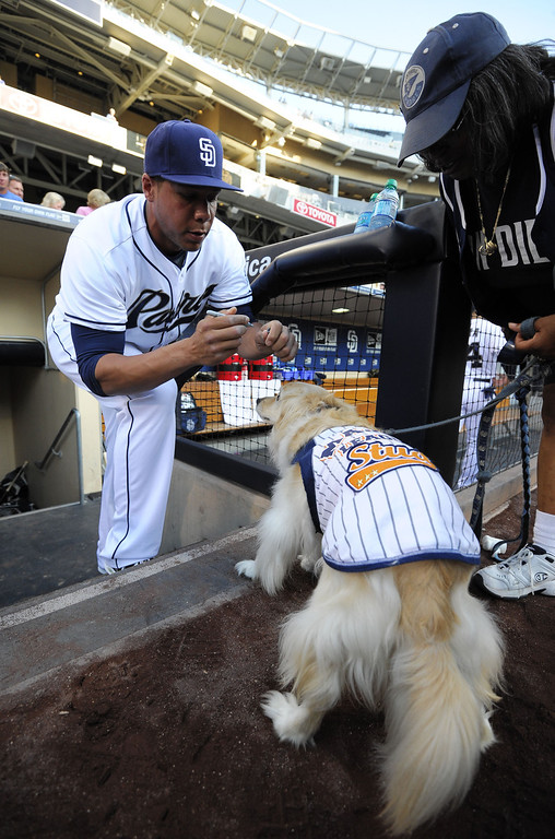 . Kyle Blanks #88 of the San Diego Padres signs an autograph on a the back of a dog named Bimbo before a baseball game against the Colorado Rockies at Petco Park on July 9, 2013 in San Diego, California.  (Photo by Denis Poroy/Getty Images)