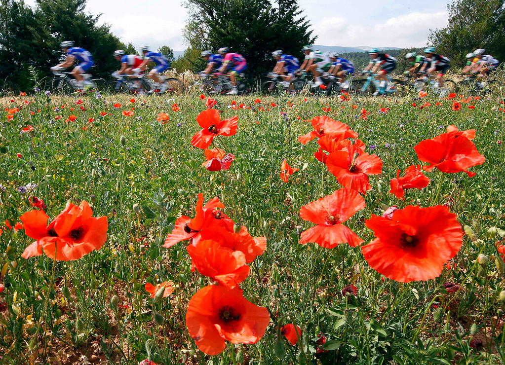 . The pack of riders cycles on its way during the 228.5 km fifth stage of the centenary Tour de France cycling race from Cagnes-Sur-Mer to Marseille July 3, 2013.    REUTERS/Eric Gaillard