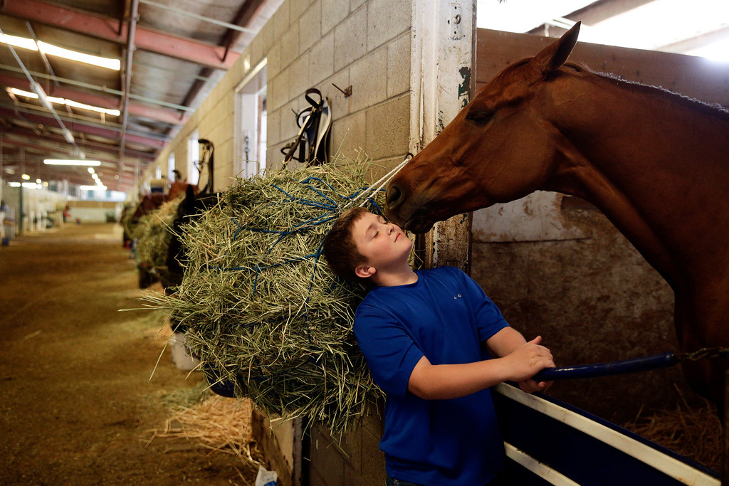 . Ryan Glatt, 11, interacts with a horse in the stable area at Betfair Hollywood Park on Sunday, Dec. 15, 2013, in Inglewood, Calif. After 75 years of thoroughbred racing, Betfair Hollywood Park is closing for good. The 260-acre track that hosted Seabiscuit and the first Breeders\' Cup in 1984 will be turned into a housing and retail development starting next year. (AP Photo/Jae C. Hong)