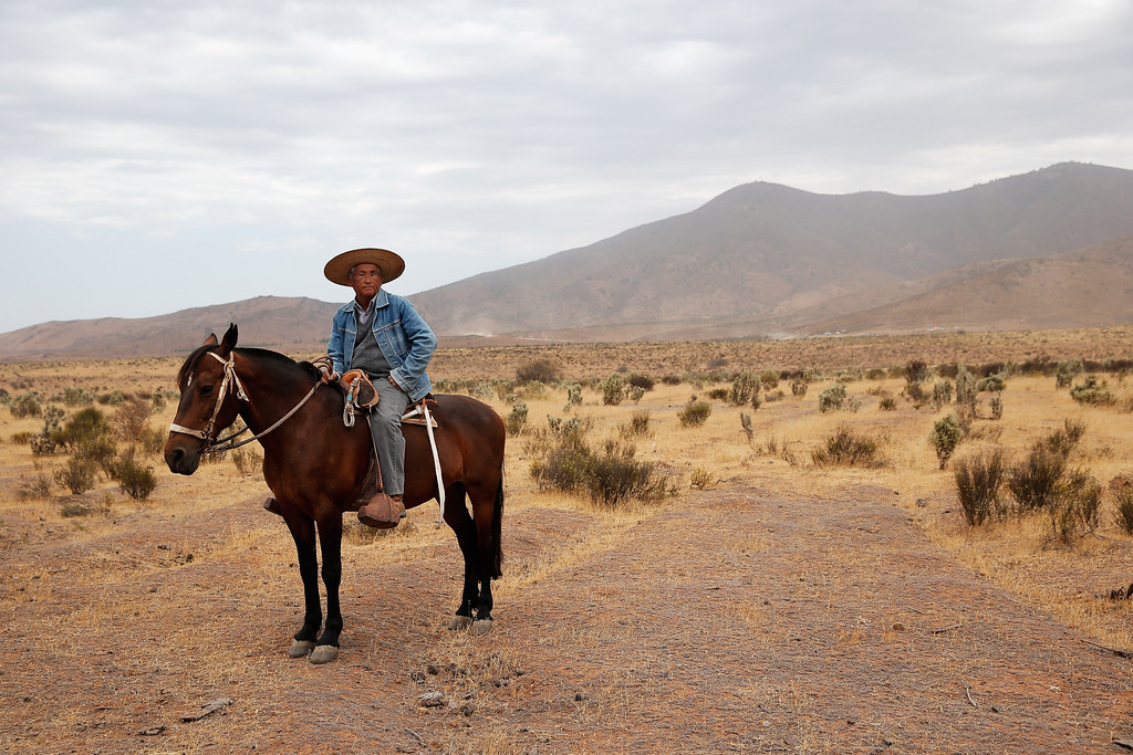 . ILLAPEL, CHILE - JANUARY 18:  A local traditional man on a horse waits at the finish line after stage 13, the final leg on the way to Valparaiso during Day 14 of the 2014 Dakar Rally on January 18, 2014 in Illapel, Chile.  (Photo by Dean Mouhtaropoulos/Getty Images)