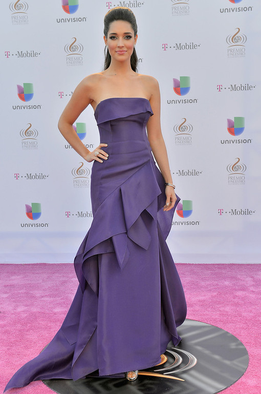 ". Amelia Vega arrives at the 25th Anniversary Of Univision\'s ""Premio Lo Nuestro A La Musica Latina\"" on February 21, 2013 in Miami, Florida.  (Photo by Gustavo Caballero/Getty Images for Univision)"