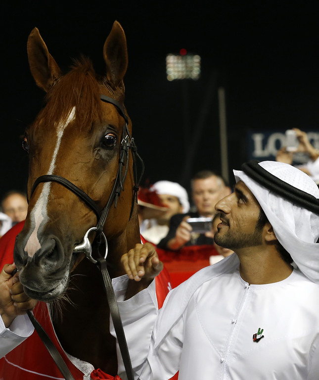 . Sheikh Hamdan bin Mohammad bin Rashid al-Maktoum, Crown Prince of Dubai, looks at his father\'s horse, African Story, after it won the Dubai World Cup, the world\'s richest horse race, at the Meydan race track in the Gulf Emirate on March 29, 2014. A cosmopolitan gathering of horses from seven different countries contested the US$10 million Emirates Dubai World Cup. (KARIM SAHIB/AFP/Getty Images)