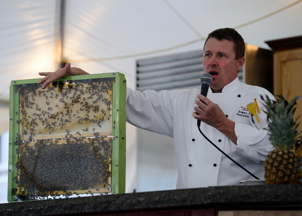 . DENVER, CO - AUGUST 29: Inside the Albert Bartlett Culinary Showcase tent, Jasper Johnson from Randolph\'s Restaurant, talks about the importance of honey bees for our food supply.  Hungry visitors make their way to the opening day of A Taste of Colorado at Civic Center Park in downtown Denver on Friday, Aug. 29, 2014. The food and music festival runs through Labor Day Weekend. (Kathryn Scott Osler/The Denver Post)