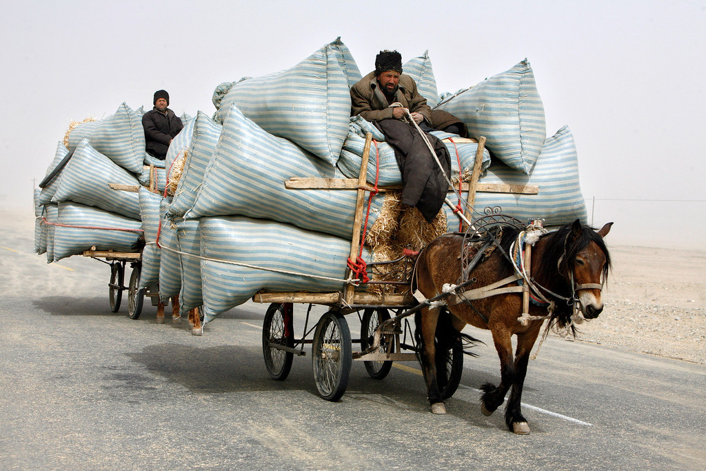 . Uighur men ride their horse carts during a sandstorm as they deliver hay around the Paklamakan desert, some 100km (63 miles) east to Yecheng, in the region of Xinjiang April 5, 2008. REUTERS/Nir Elias