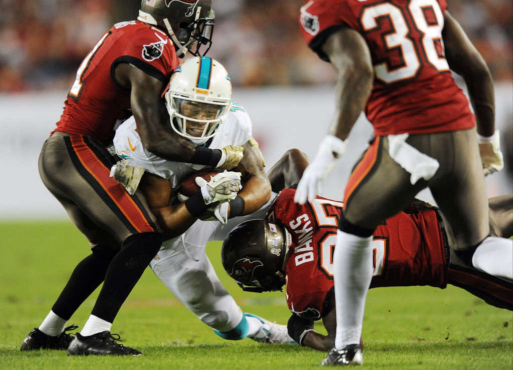 . Richard Lewis of the Miami Dolphins catches a pass against the Tampa Bay Bucaneers during the first half at Raymond James Stadium in Tampa, Fla., on Monday, Nov. 11, 2013. (Jim Rassol/Sun Sentinel/MCT)