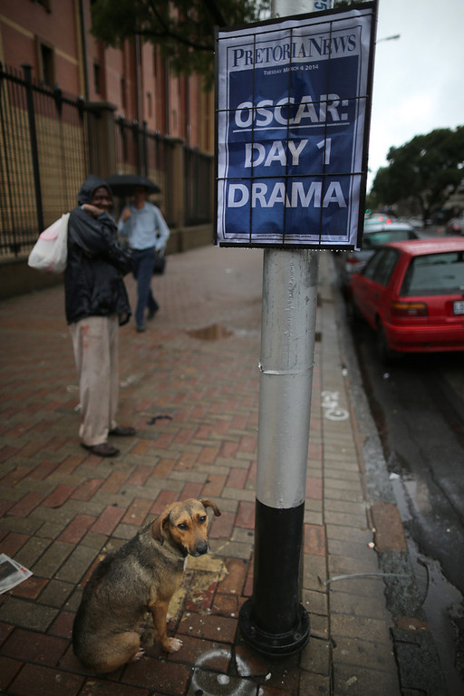 . A stray dog sits next to a newspaper poster on the second day of the Oscar Pistorius trial on March 4, 2014 in Pretoria, South Africa. Olympic and Paralympic athlete Oscar Pistorius, aged 27, is accused of murdering his girlfriend Reeva Steenkamp. Pistorius denies the allegation claiming he mistook Steenkamp for an intruder inside their home on Valentine\'s Day 2013.  (Photo by Christopher Furlong/Getty Images)