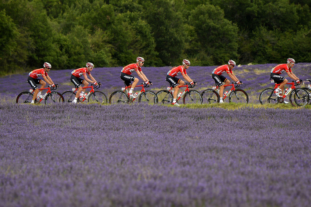. Cyclists of the Belgium\'s Lotto-Belisol team ride past a lavender field during the 222 km fifteenth stage of the 101st edition of the Tour de France cycling race on July 20, 2014 between Tallard and Nimes, southern France.  LIONEL BONAVENTURE/AFP/Getty Images