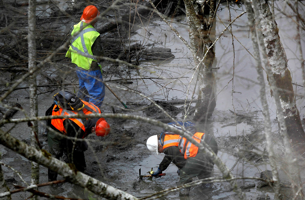 . Search and rescue efforts continue at the mudslide site Sunday morning near Oso, Wash., Sunday, March 30, 2014. (AP Photo /The Herald, Annie Mulligan)