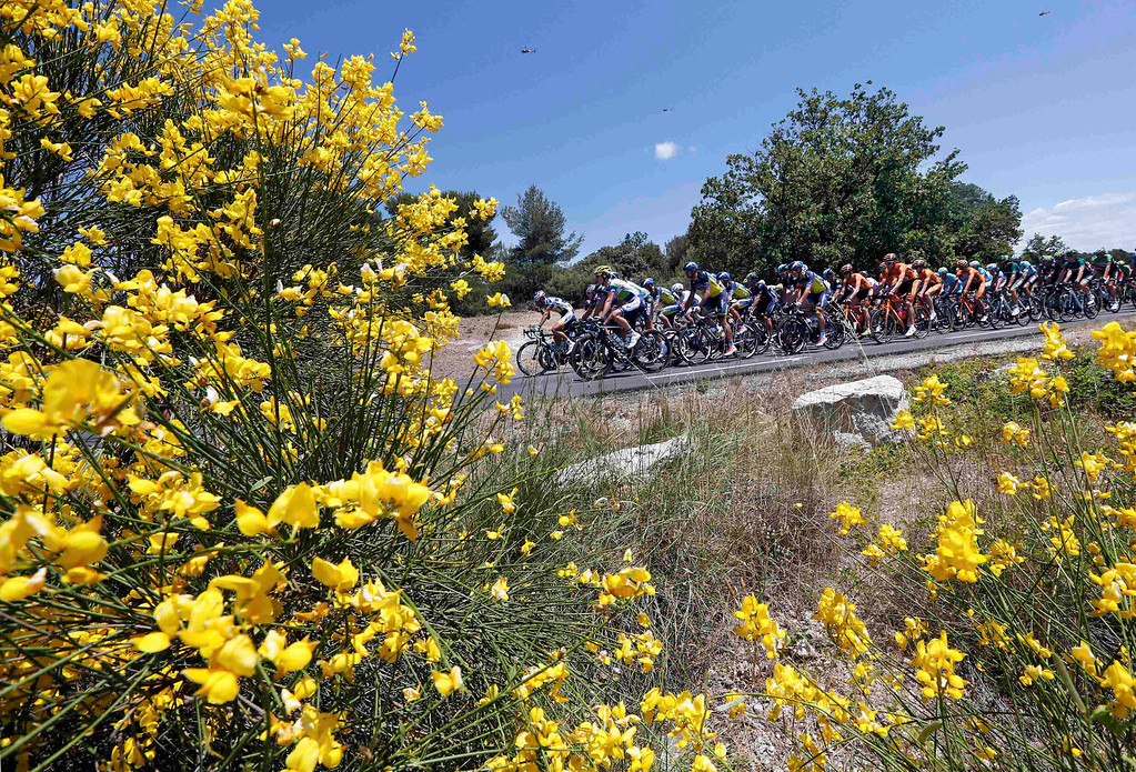 . The pack of riders cycles on its way during the 176.5 km fifth stage of the centenary Tour de France cycling race from Aix-En-Provence to Montpellier July 4, 2013.    REUTERS/Jean-Paul Pelissier