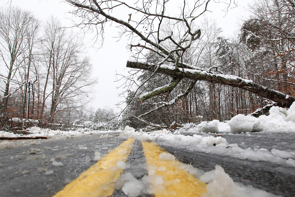 . A fallen tree blocks one side of Earlysville Road in Charlottesville, Va.as snow continues to fall  Wednesday, March 6, 2013.  A  winter storm continues to pile on snow in central and western portions of the state.   (AP Photo/The Daily Progress, Sabrina Schaeffer)
