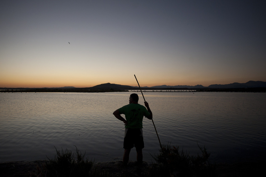 . A volunteer looks at the Fuente de Piedra lake, 70 kilometres from Malaga, on August 10, 2013, during a tagging and control operation of flamingo chicks to monitor the evolution of the species. The lake, which is the most important breeding ground for flamingos in the Iberian Peninsula, is also a nature reserve and a haven for birds with over 170 different species recorded.  Jorge Guerrero/AFP/Getty Images