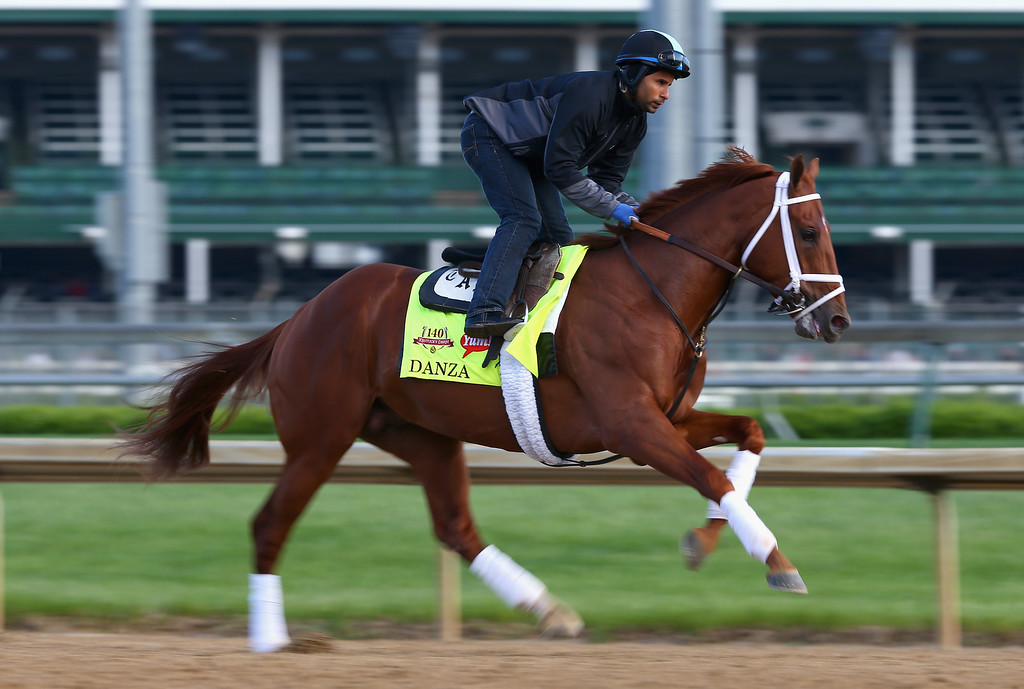 . Danza runs on the track during the morning training for the Kentucky Derby at Churchill Downs on May 1, 2014 in Louisville, Kentucky.  (Photo by Andy Lyons/Getty Images)