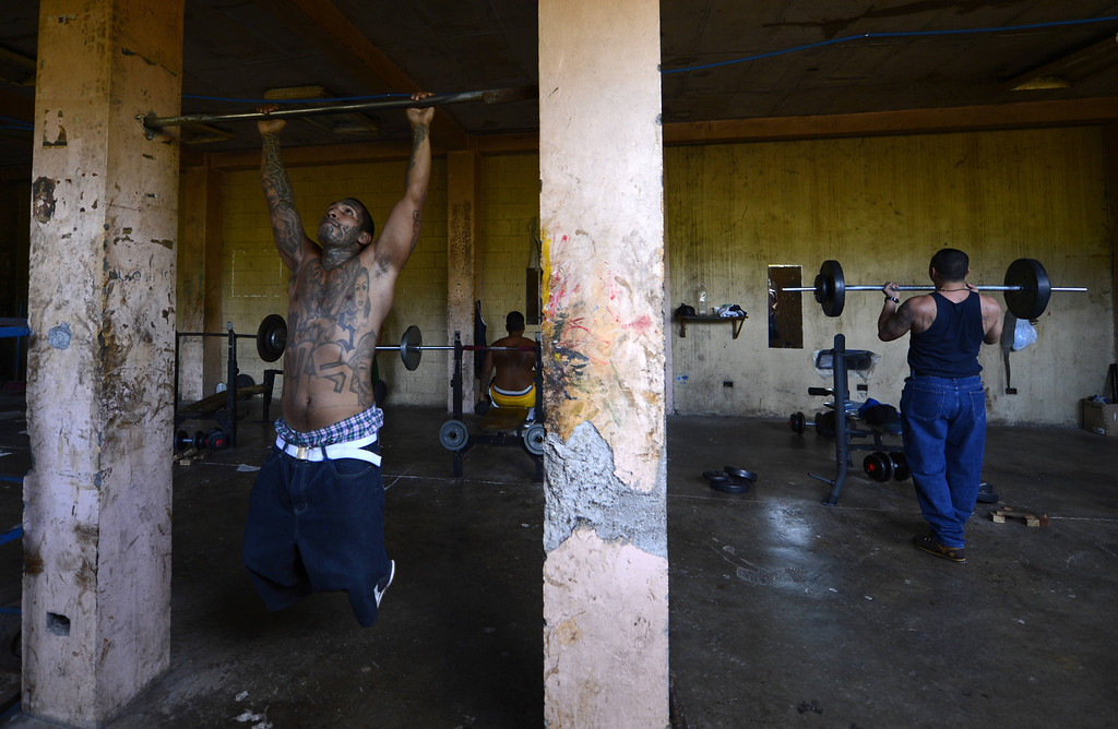 . Members of Mara Salvatrucha (MS13), workout Monday, March 4, 2013, in the gym of the Criminal Center of Ciudad Barrios, San Miguel, 160 km east of San Salvador, after one year of cessation of the violence between the rivalry of two large gangs in El Salvador, MS13  and 18 st.  El Salvador, a small country of six million people, is brimming with an estimated 50,000 street gang members, plus another 10,000 who are behind bars.  Since the first truce took effect about a year ago, the average daily death toll from gang-related violence has gone down from 14 to five. Marvin RECINOS/AFP/Getty Images