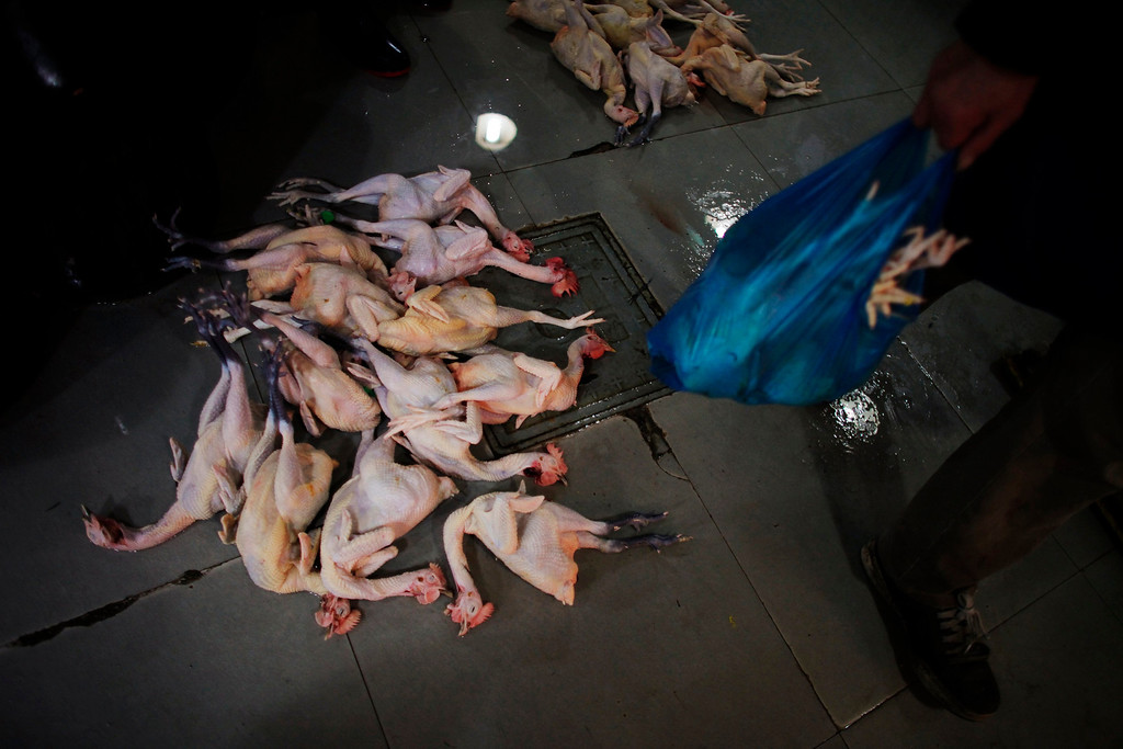 . Chickens are pictured on the floor of a food market in downtown Shanghai, April 5, 2013. Chinese authorities slaughtered over 20,000 birds at a poultry market in Shanghai on Friday as the death toll from a new strain of bird flu mounted to six, spreading concern overseas and sparking a sell-off in airline shares in Europe and Hong Kong. All the 14 reported infections from the H7N9 bird flu strain have been in eastern China and at least four of the dead are in Shanghai. REUTERS/Carlos Barria