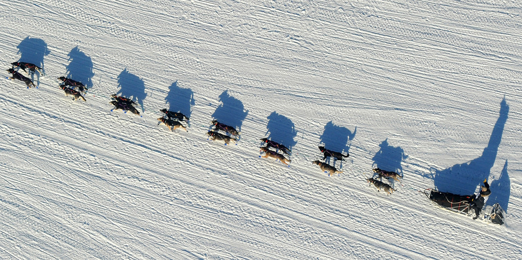 . Nathan Schroeder drives his dog team down the trail just after the start of the 2014 Iditarod Trail  Sled Dog Race out of Willow, Alaska, Sunday, March 2, 2014. The race will take mushers nearly a thousand miles to the finish line in Nome, on Alaska\'s western coast. (AP Photo/Anchorage Daily News, Bob Hallinen)