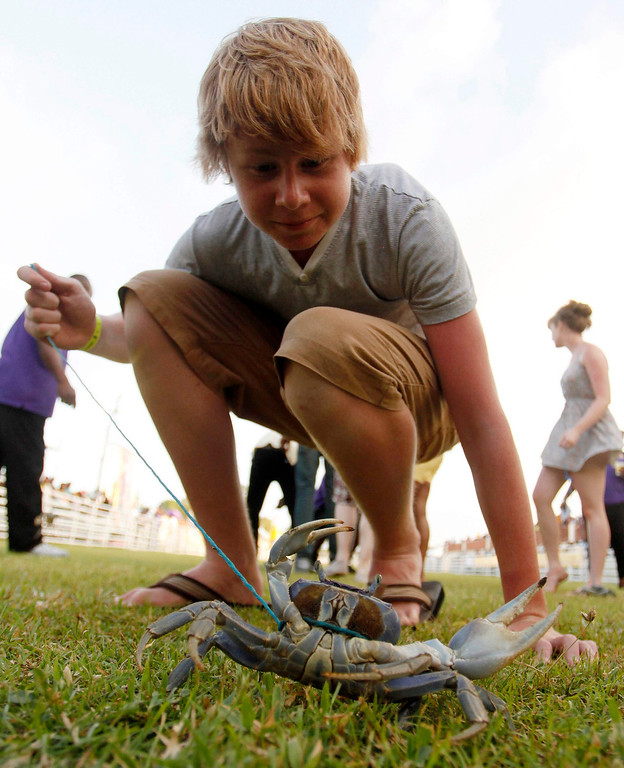 . Adam Best of Britain waits for the start of the annual crab race, one of several events held during the annual Buccoo Goat and Crab Race Festival at Buccoo Integrated Facility on Tobago Island, April  2, 2013. The event is part of the island\'s annual Easter celebration. Picture taken April 2, 2013. REUTERS/Andrea De Silva